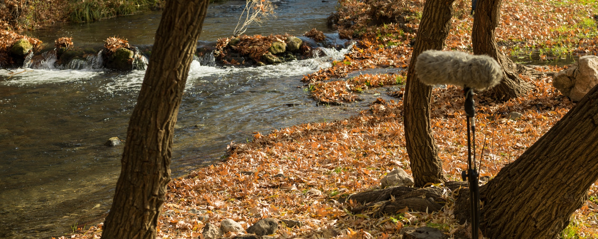 Boom microphone equipment recording location sound of flowing stream in nature