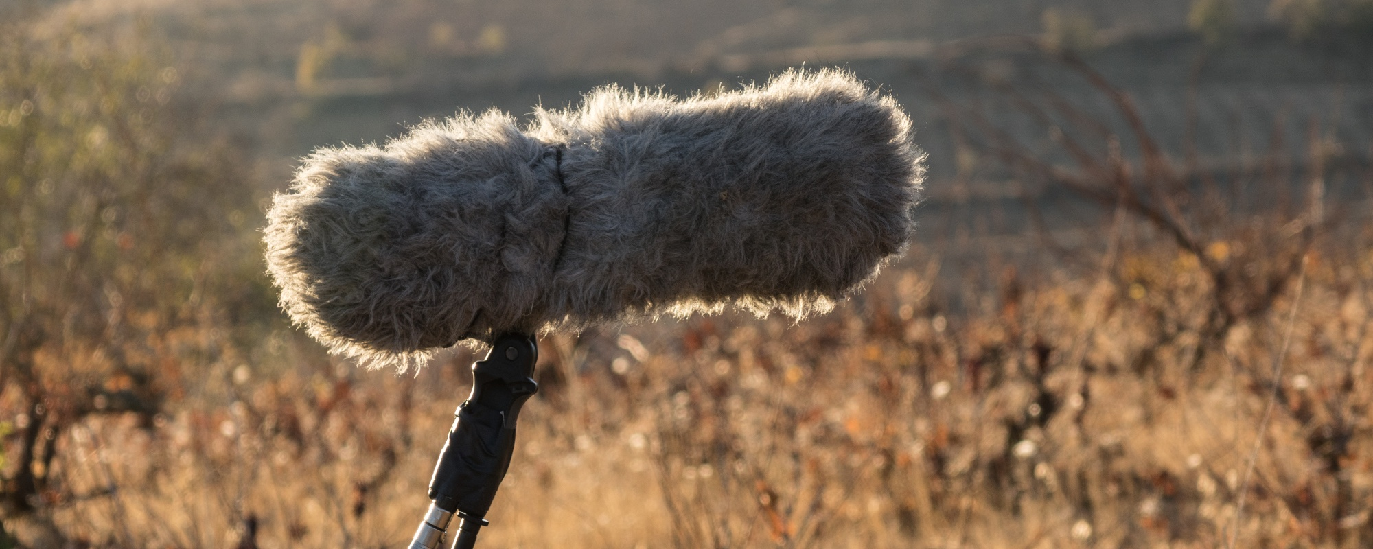 Closeup of boom microphone equipment used by location sound recordists for exterior film production